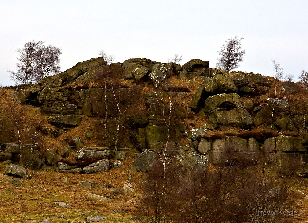 Brimham Rocks #3 -Nidderdale. by Trevor Kersley