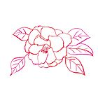 Shrub Rose Watercolor Line Drawing by Sandra Connelly