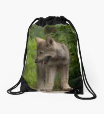 Top of the World Drawstring Bag