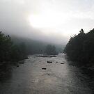 Misty River by Christine  Wilson