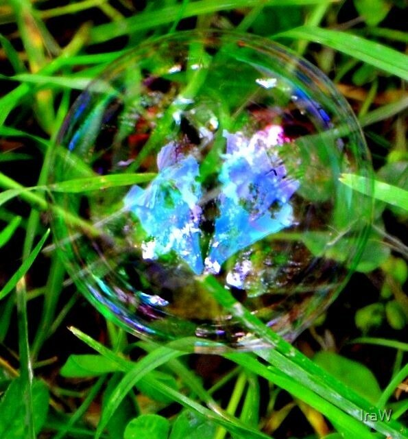 Bubble on Grass by IraW