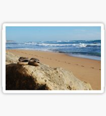 Desolate relaxing beach with flipflops Sticker
