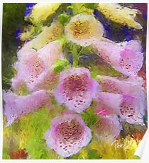 Cowbell Flowers - Cambria, CA Poster