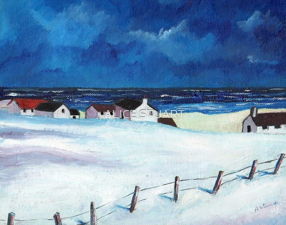 Snow at Balmedie by ALICE STUART