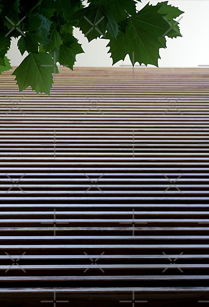 Louvers  & Leaves by TeAnne