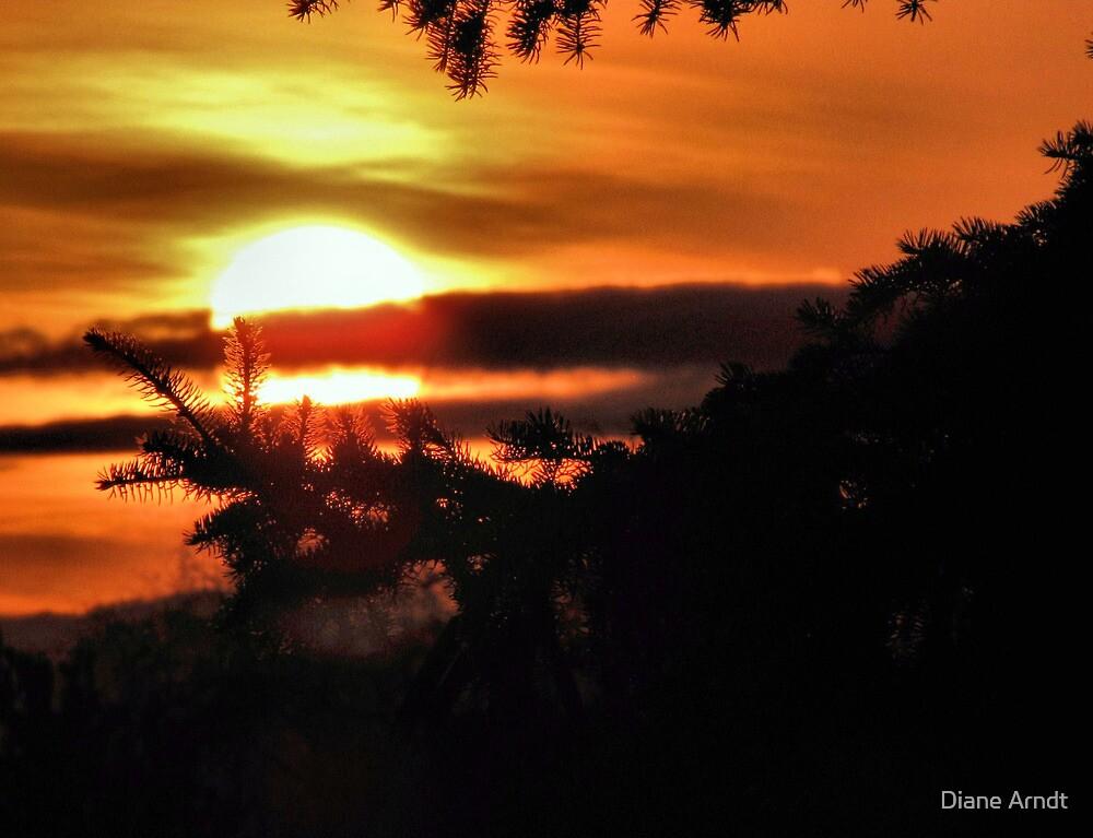 Easter Sunrise....2010 by Diane Arndt