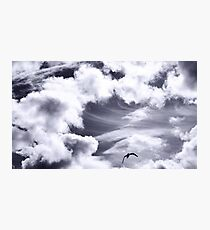 Fly, lonely angel Photographic Print