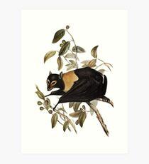 This is one good looking bat Art Print