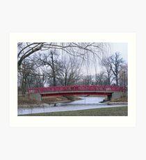 Bridge Amongst The Willows Art Print