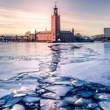 Ayuntamiento de Estocolmo en invierno de Nicklas81