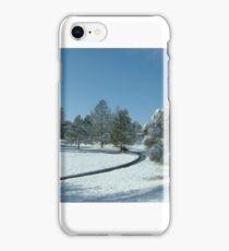 Snow scene with creek iPhone Case/Skin