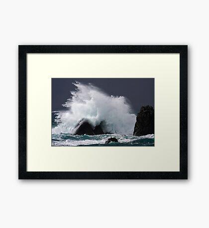 Lizard Storm Framed Print