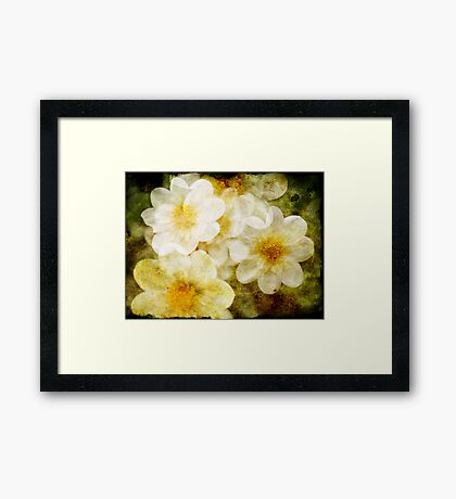 Glorious Imperfection Framed Print