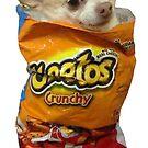 Cheeto Chihuahua by Elisecv