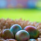 Happy Easter by Mandy Wiltse