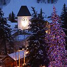 Vail Colorado by Steve  Taylor