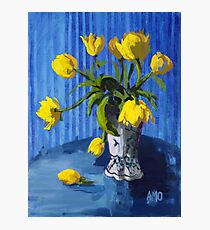 Yellow Tulips with Blue Photographic Print