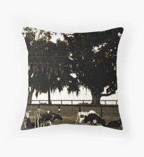 Cow Retreat Throw Pillow