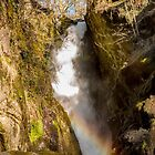 Aira Force, The Lake District NP. by Sue Knowles