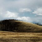 Rolling Hills of Alberta by TracyL72