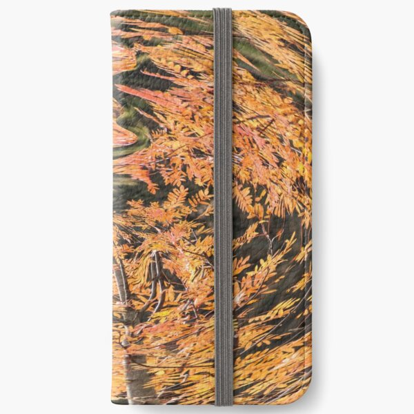 fall vortex iPhone Wallet