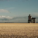 The Old Grain Elevator  by TracyL72