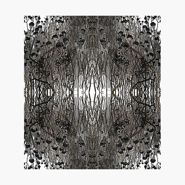 #Tree #Monochrome #Pattern #Design Symmetry nature tree wood old pattern dry Photographic Print