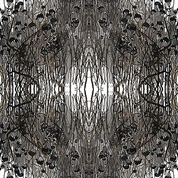 #Tree #Monochrome #Pattern #Design Symmetry nature tree wood old pattern dry by znamenski