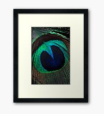 Just a feather. Framed Print