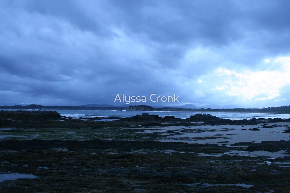 Barlings Beach Easter 2010 by Alyssa Passlow