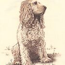 """Josie"" Color Pencil Art Work by John D Moulton"