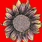 Yellow Red Sunflowers  by Lukasz  Czyzewski