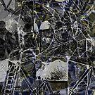 Apollo 11 Lunar Excursion Module Mashup Collage by Jim Plaxco