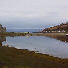 Lochranza Castle by Lynne Morris
