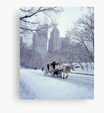 Horse Carriage in Central Park Canvas Print