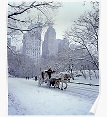 Horse Carriage in Central Park Poster