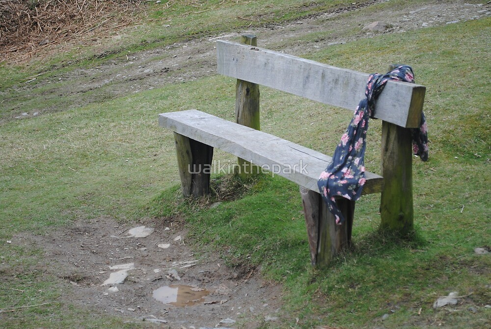 A Waiting Bench by walkinthepark
