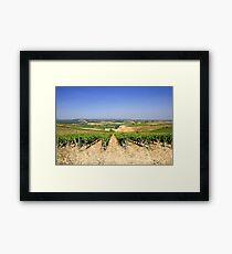 Chianti Hills  Framed Print