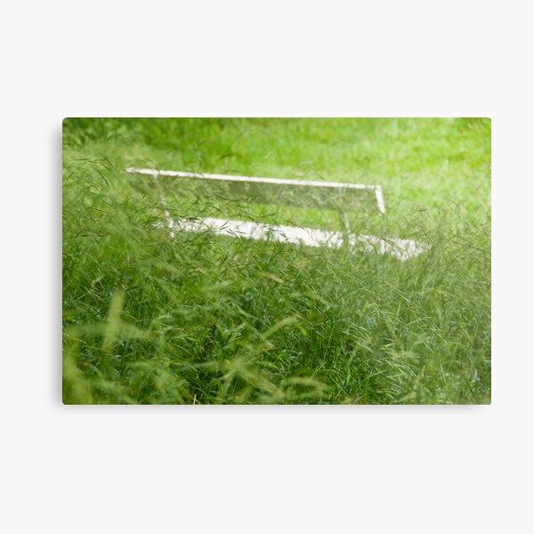 Contemplation - Bench hidden by long grass Metal Print