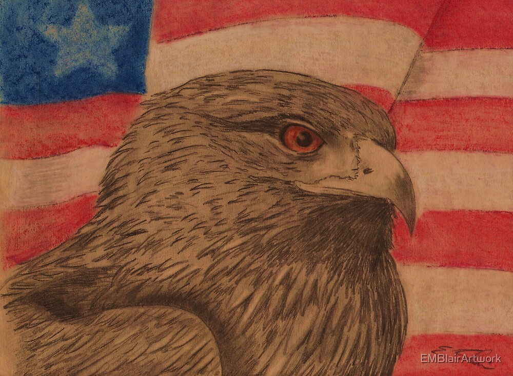 Flag And Eagle by EMBlairArtwork
