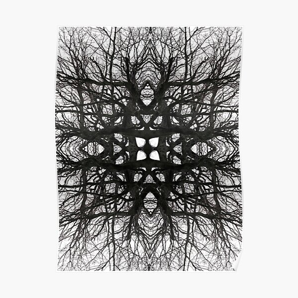 black and white woven tree branches Poster