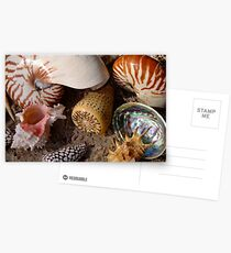 Suzie Sells Seashells by the Seashore! Postcards