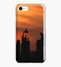 Cormorants at Sunset iPhone Case/Skin