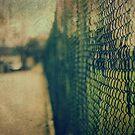 Fence No.5 by Sid Black