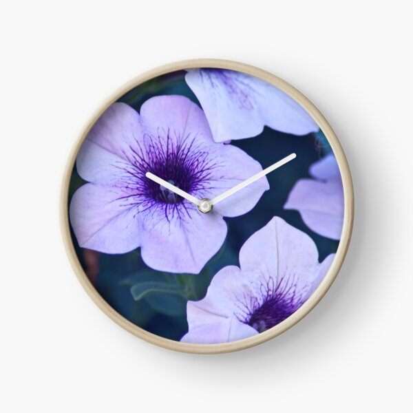 petunia surfinia Clock