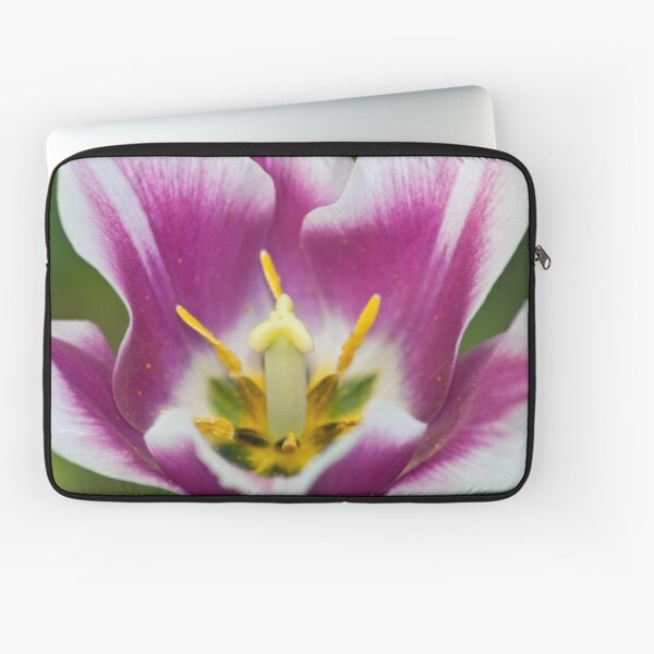 tulip flower interior Laptop Sleeve