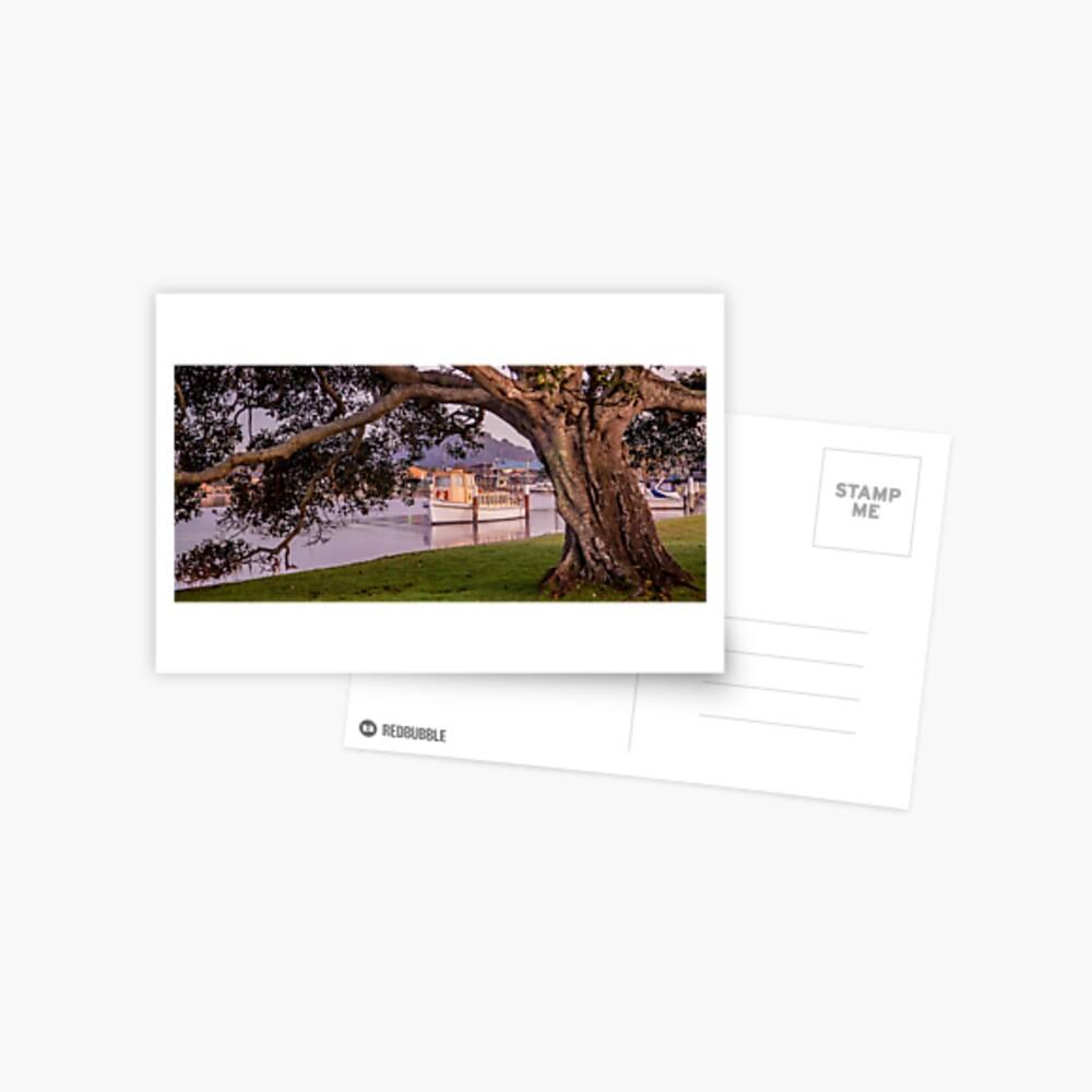 Timbers Postcard