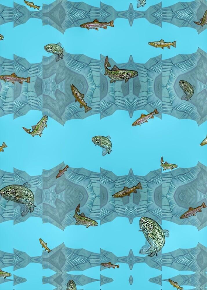 Freshwater Trout. by Bo Jones