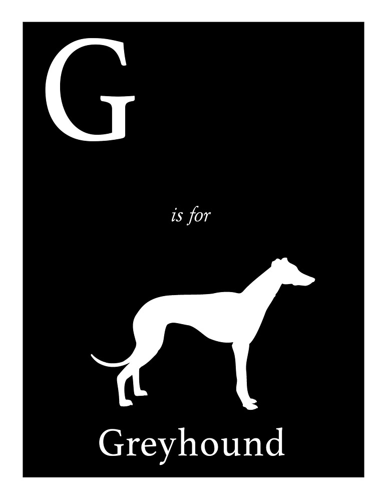 G is for Greyhound by mohollaren
