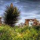 Presidio San Saba by Terence Russell